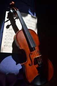 My beloved violin