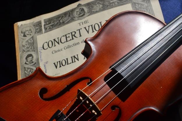 Violin & concert violinist music