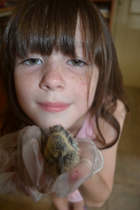 Miss with a baby bird