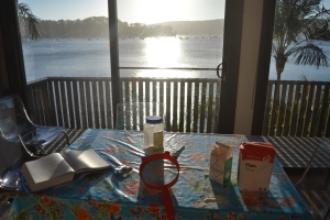 Cooking with a view.
