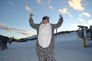 Wild Zebra Spotted on the slopes.
