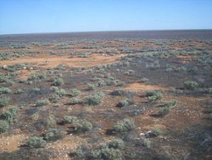 The Nullarbor Plain, South Australia viewed from the Indian Pacific Railway.