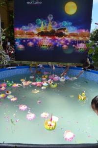 Floating lanterns at the Thai Festival, Circular Quay.