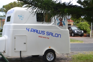 The dog salon pulls up.