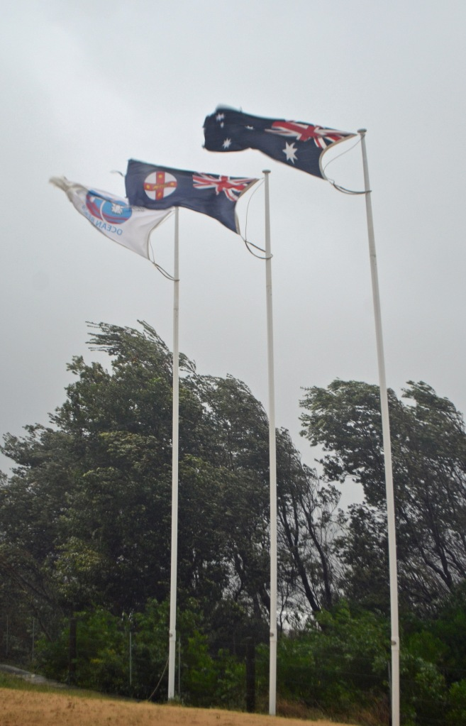 Flags flapping in the storm.