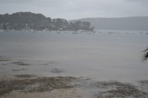 Hardly a postcard perspective: a wet Easter in Sydney as Autumn sets in.