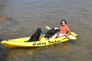 Kayaking with two dogs onboard certainly is an acquired skill, especially with Bilbo who hates getting his paws wet and prefers terra firma.