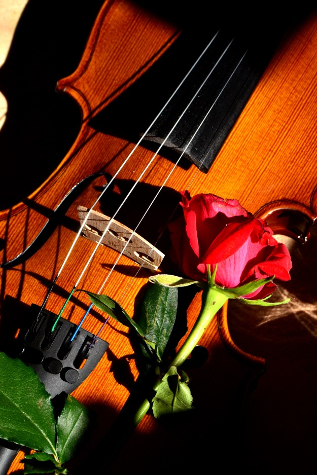 My beloved violin.