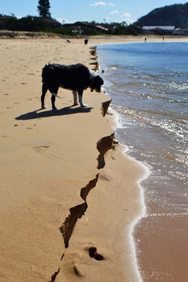 Bilbo wasn't too sure about the beach disappearing, after all!