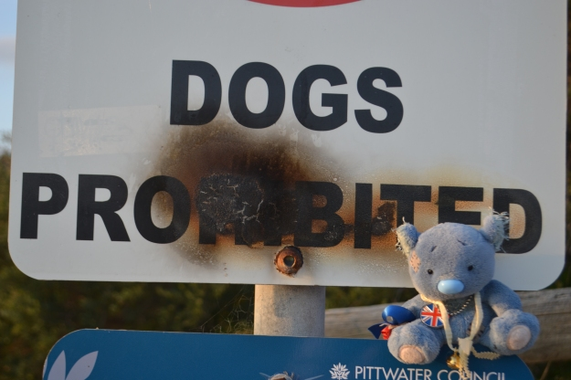 Wally was glad he wasn't a dog and did wonder about the scorch marks on the sign.