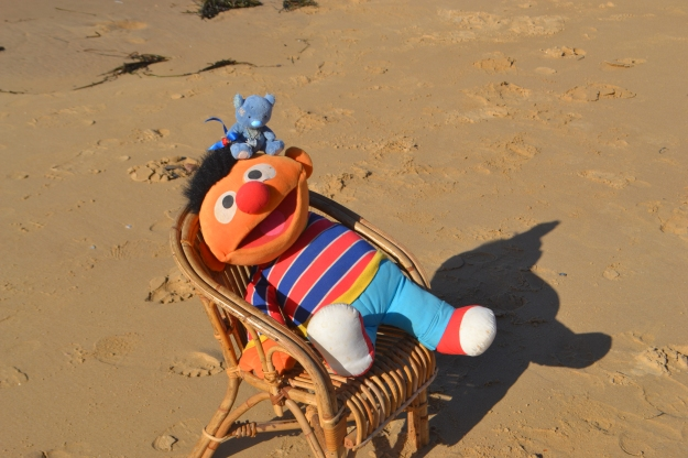 Wally the Wandering Wombat and Ernie at the beach. But where's Bert?