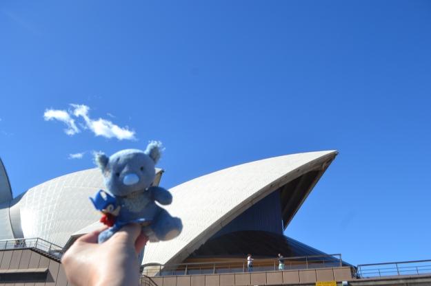 Wally climbing the Opera House.
