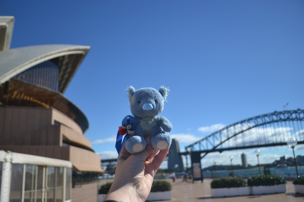 Wally posing between two incredible Aussie icons: the Sydney Harbour Bridge and the Opera House.