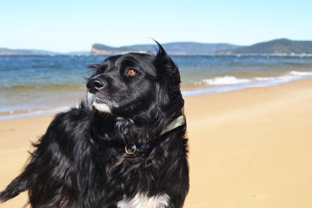 Lady at Ocean Beach, NSW.