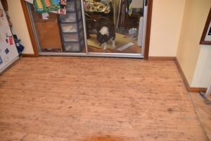 After sanding the floorboards.