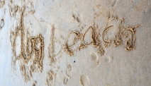Dog Beach: my daughter inscribed this with a stick in the sand.
