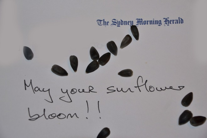 A personal message from Sydney Morning Herald's Chief Foreign Correspondent,  journalist Paul McGeogh & Photographer Kate Geraghty who sent me the sunflowers.