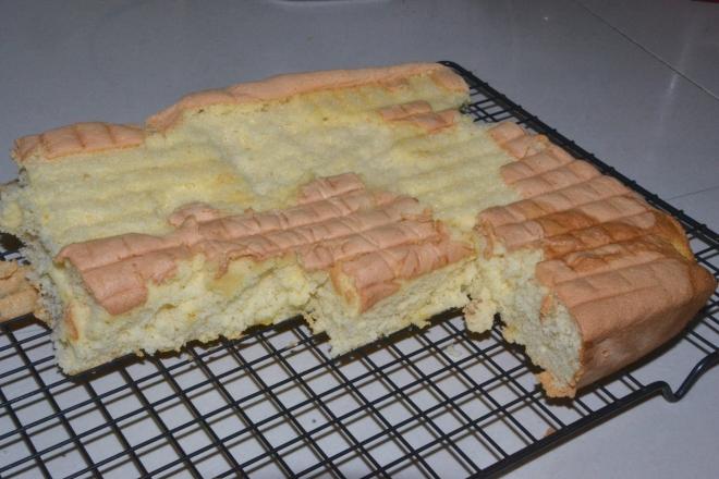 Shark-Eaten Sponge Cake