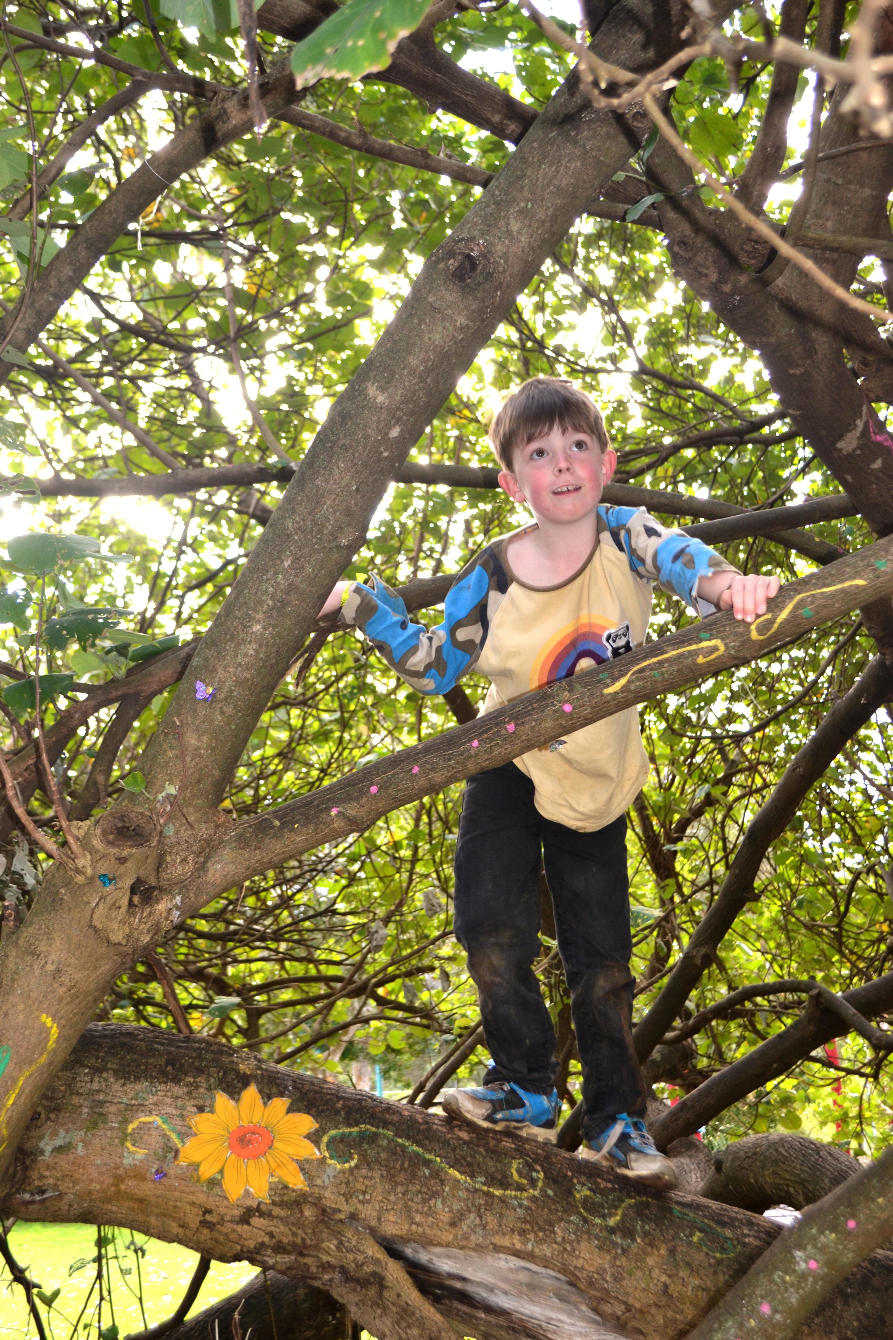 Jonathon Climbing Tree