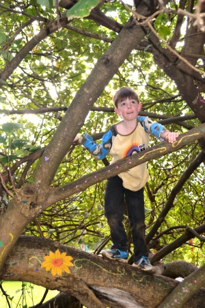 Mister in the Climbing Tree 2011, Aged 6.