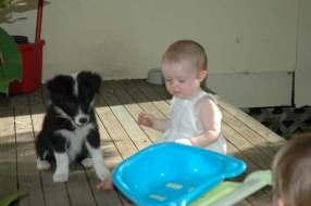 Bilbo + Amelia