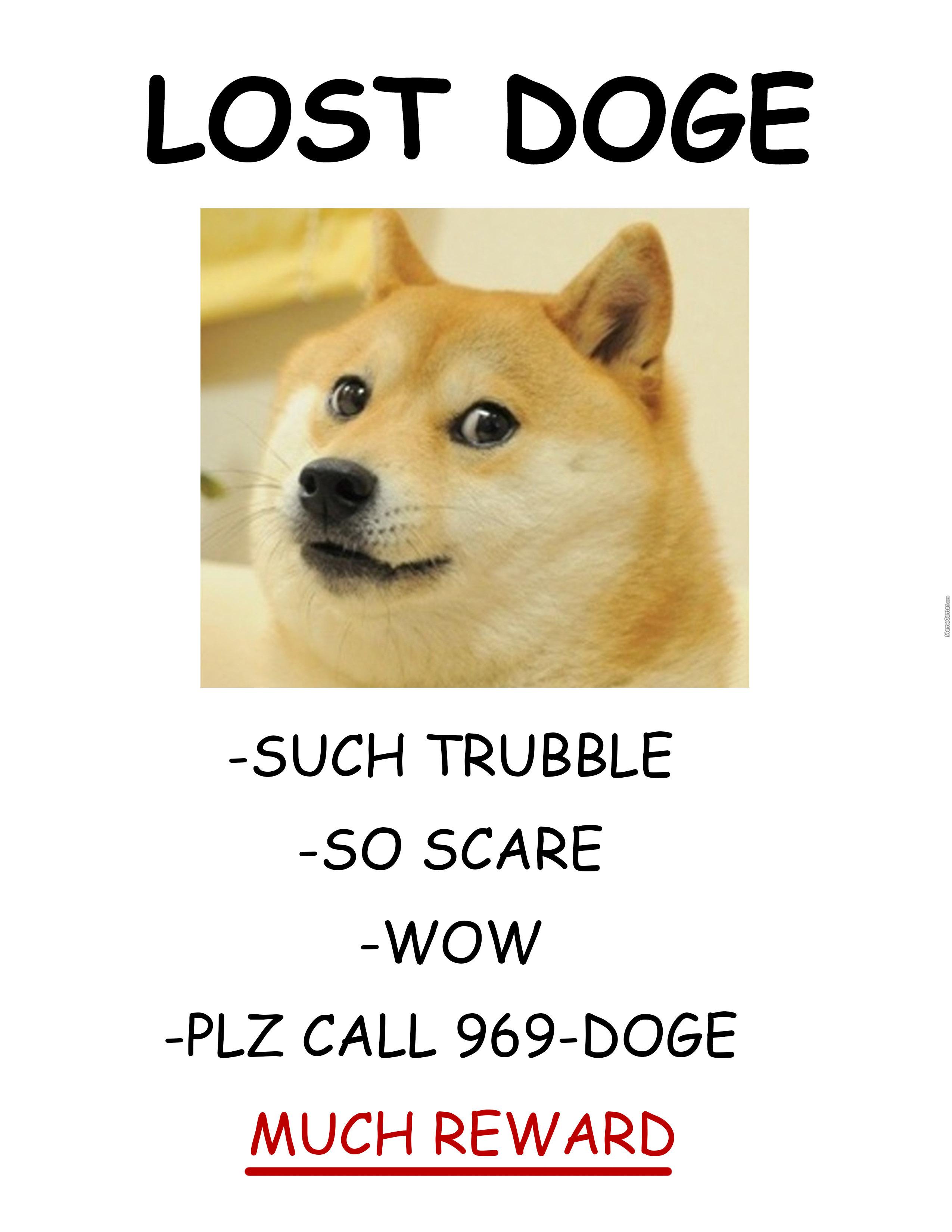 doge-much-help-pls_o_3233637