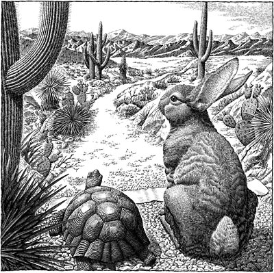 tortoise_and_hare