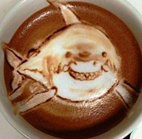 Shark Foam