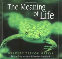 Meaning of Life Grieve