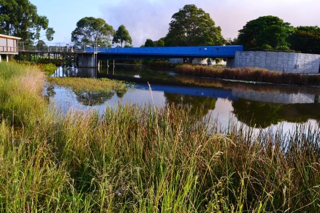 Blue Bridge Monets Pond