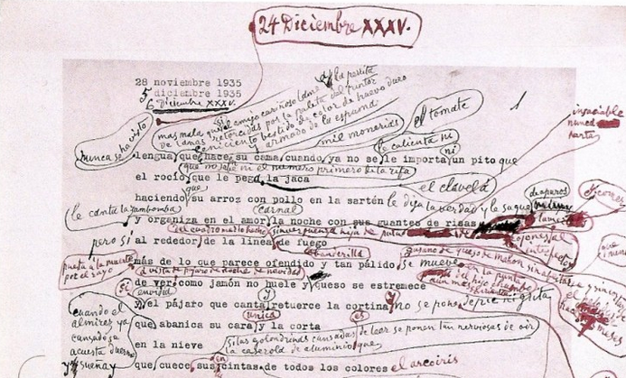 picasso-annotated-poem