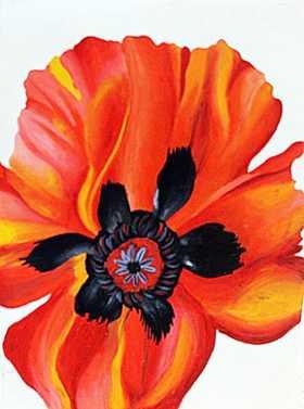 Poppy Untitled 1970 oil