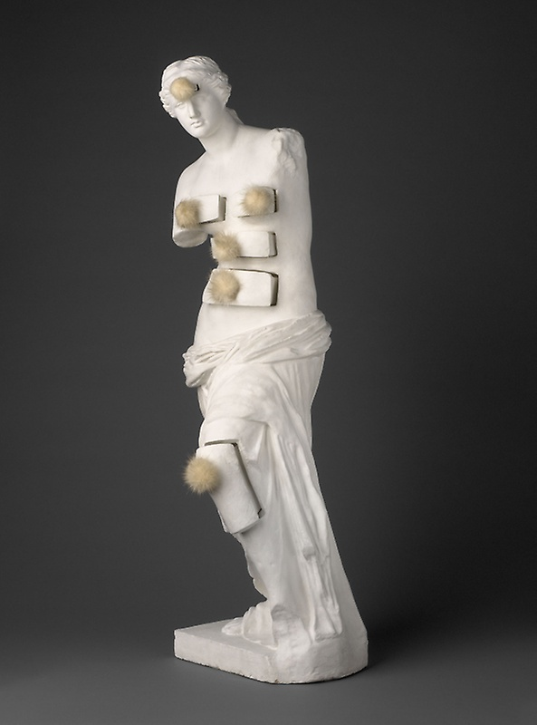 Venus with Drawers.jpg