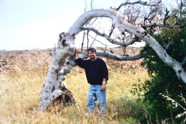 Geoff Greenough tree
