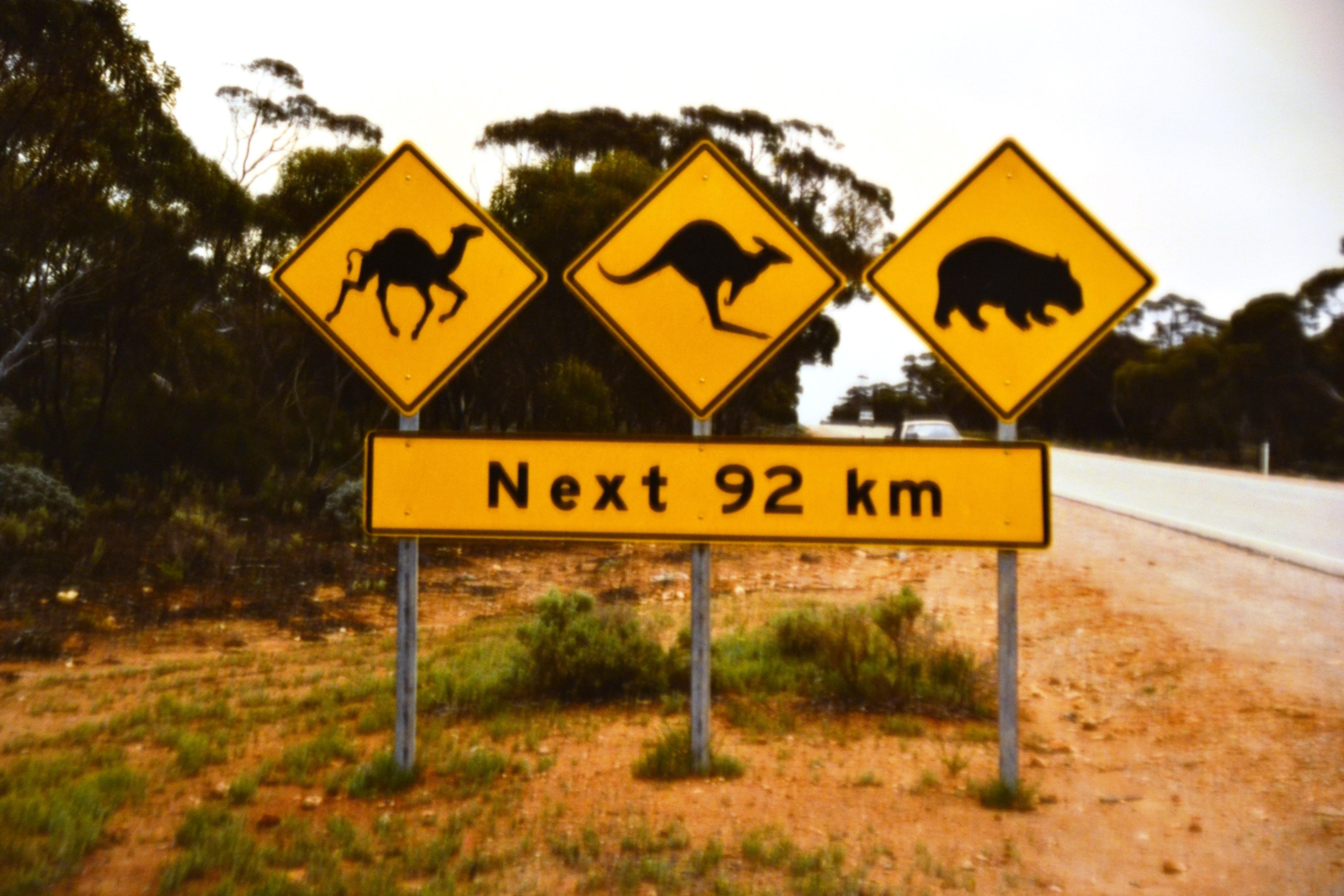 Nullarbour Roadsign