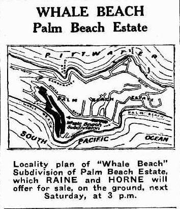 Whale Beach Estate 1928