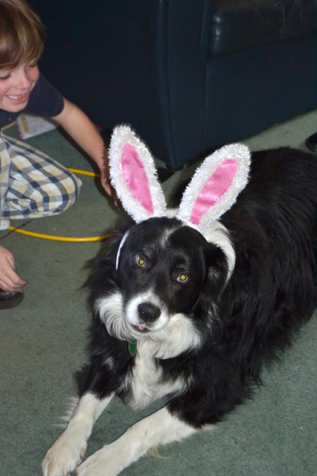 Bilbo Rabbit Ears